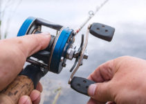 best baitcasting reels for beginners