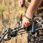 Best Compound Bow – Top 10 Reviews 2021