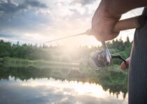 Best Spinning Reel Under 100